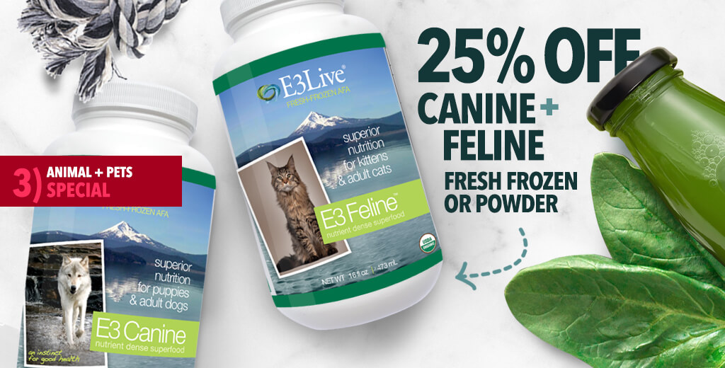25% OFF Canine and Feline