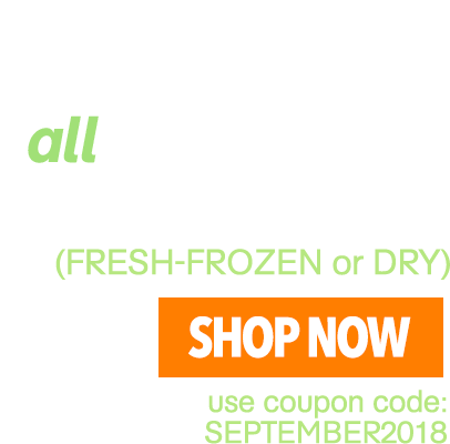 15% OFF all BrainON Products!