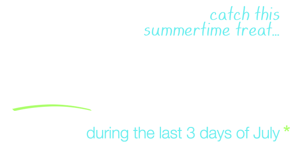 20% OFF your order - An End of Summer Treat!